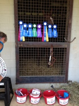 Fair Hill Ribbons